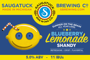 Blueberry-Lemonade-Shandy (1)