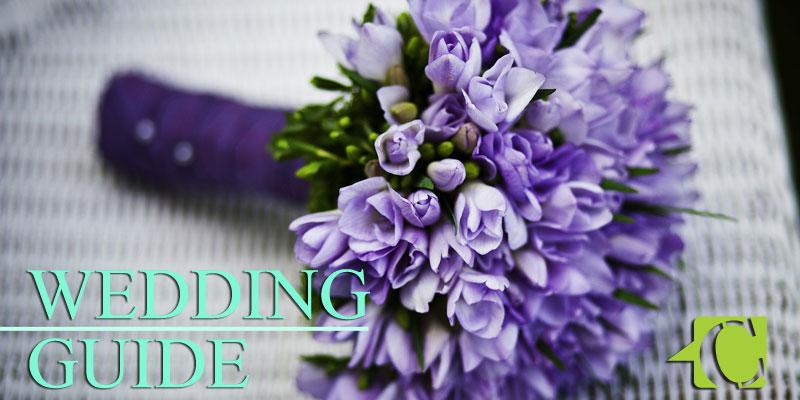 ann-arbor-wedding-feat
