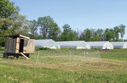 sunseed-farm-photo