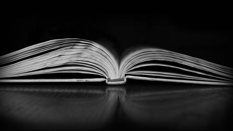 ann-arbor-valentines-book