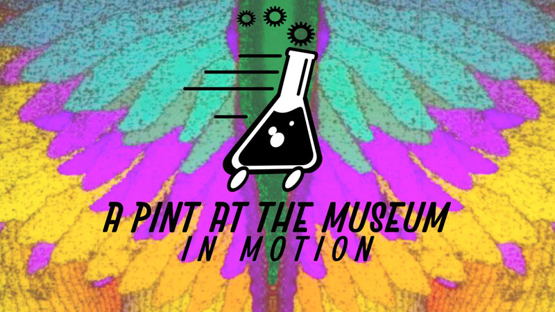 Adults Only Event at Hands on Museum on Friday, Sept. 15th