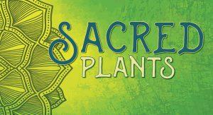 Sacred-Plants-Matthaei