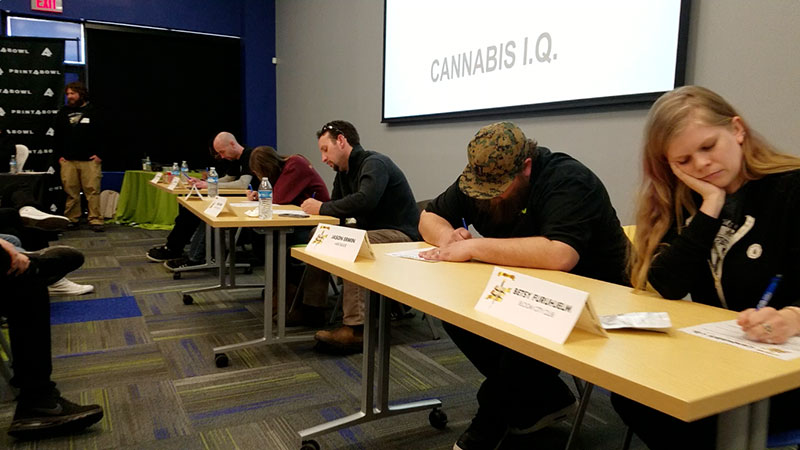 Contestants work on the Cannabis I.Q .test