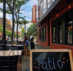 Patio-guide---Avalon-cafe-II