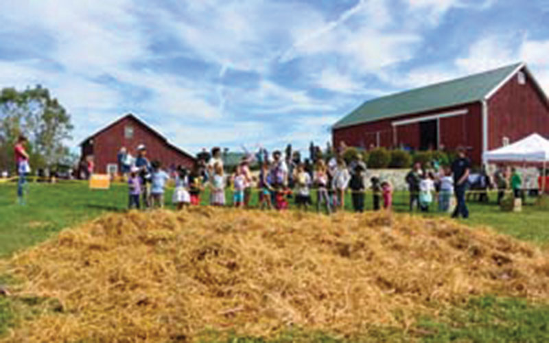 10th Annual Pittsfield Harvest Festival