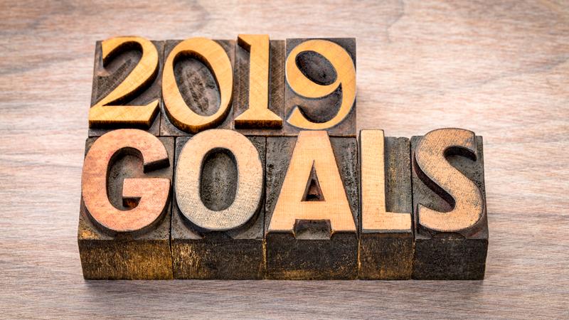 2019 goals