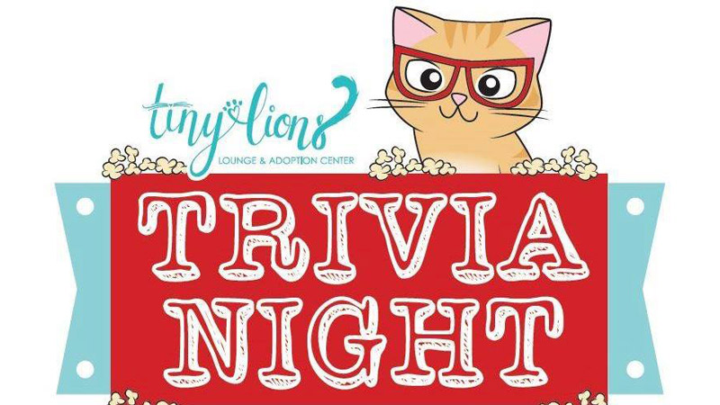 Tiny Lions trivia